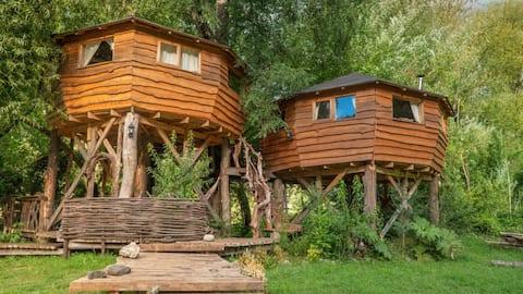 La Casa del Árbol y Tinaja - kurarrewe