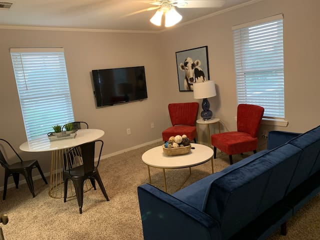 Stylish 3 Bedroom Apartment! - Close to UNT/TWU