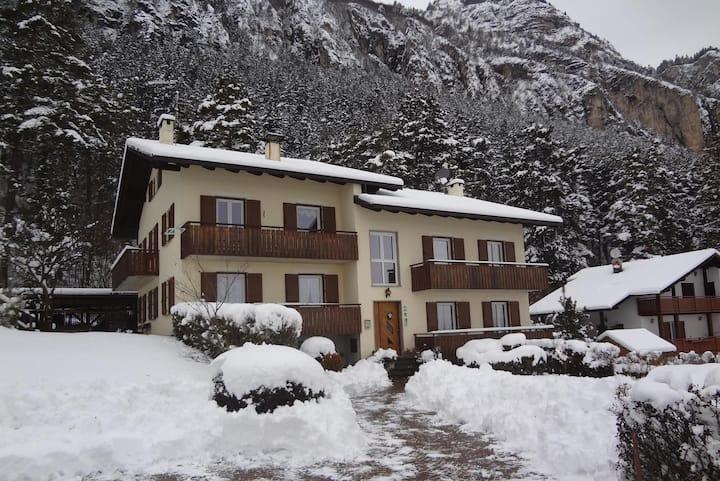 Appartamenti Casa Pineta codice 022081-AT-063822