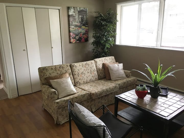 Charming 1-bedroom apartment