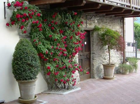 Genuine Valtellina House - La Terrazza dell'Oste