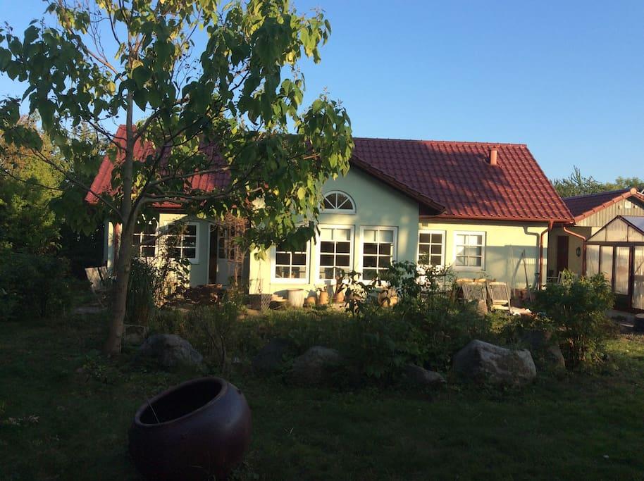 Trädgården baksidan