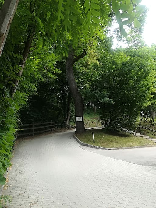 La strada privata di accesso alla casa / The private road to the house.