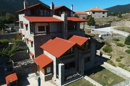 See Arachova - Parnassos Chalet 1 - Dağ Evi