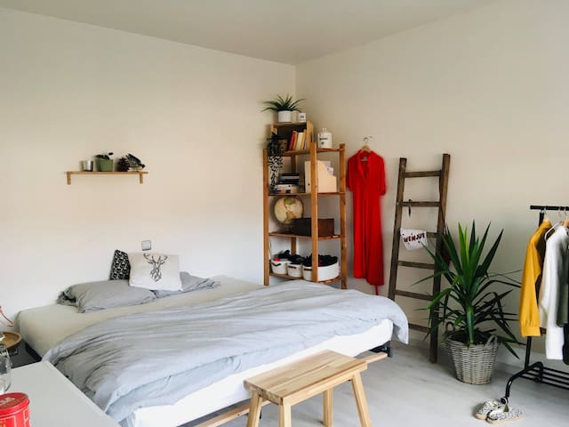 Very clean room with common spaces