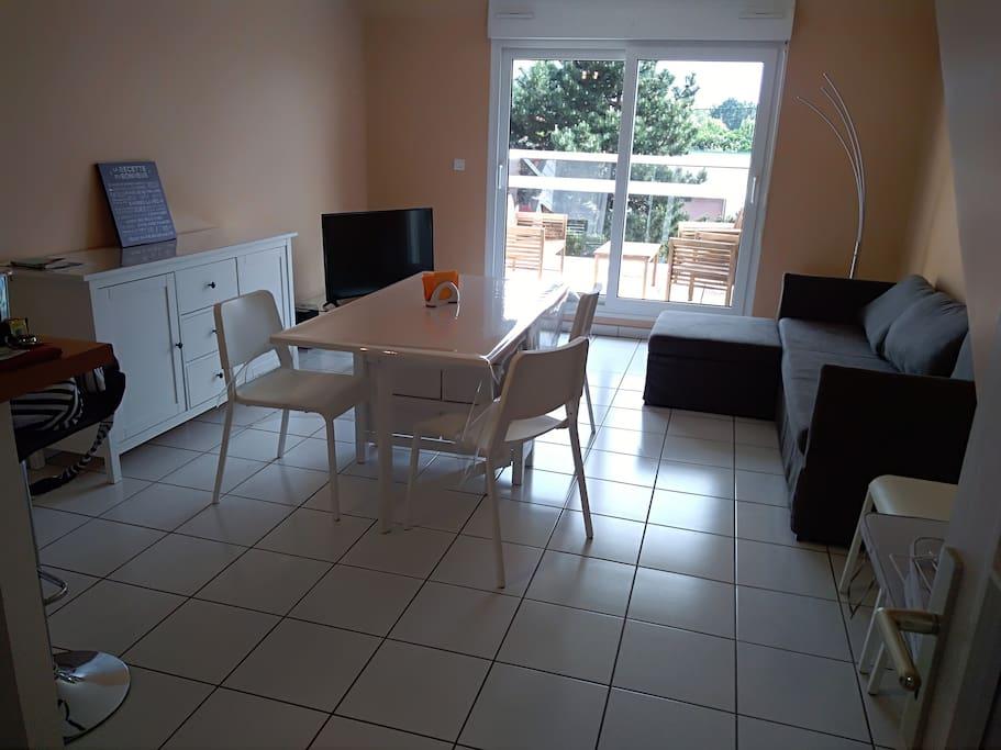 Buffet, grand canapé lit, TV, terrasse avec salon en bois exotique