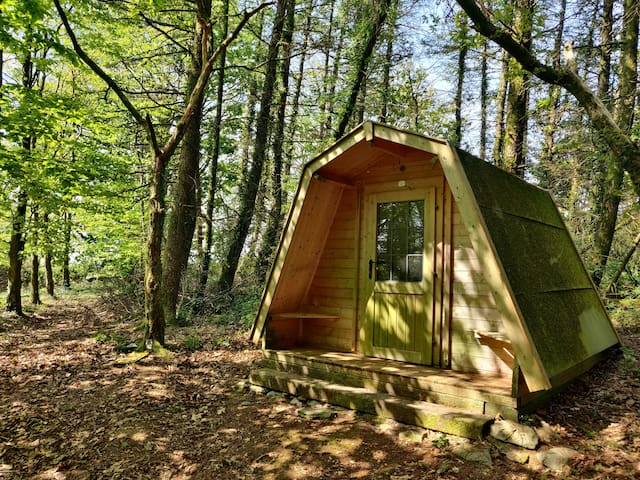 Cosy pods tucked away in a pretty woodland setting