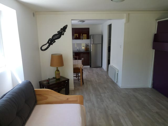 Ax Bonascre Ski, Mountain, Mountain biking, Spa tr - Ax-les-Thermes - Apartment