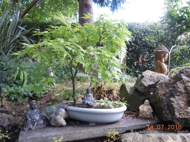 Outside the back door your discover a secret world of plantsBonsai and trees planted and kept well by Chris who is now retired and has the time he needs to keep it looking beautiful x