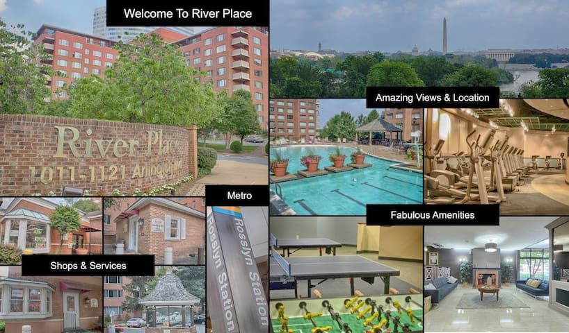 ENTIRE APARTMENT -2 BLOCKS TO ROSSLYN METRO TO DC
