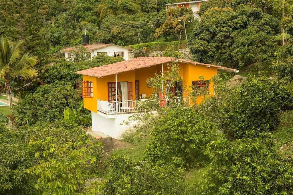 Casa con piscina en jard n tropical casas en alquiler en for Alquiler de casas con piscina privada que admiten perros