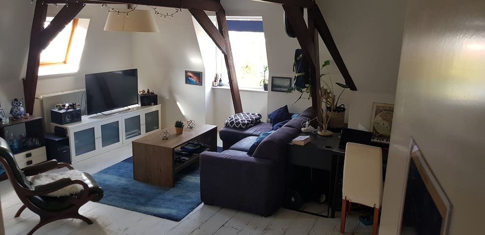 Lovely apartment in the heart of Leiden