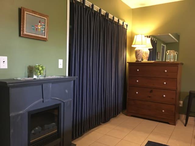 Electric Fireplace & Walkin Closet