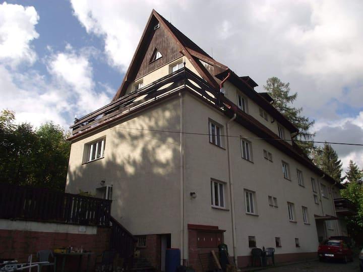 Jandlova vila