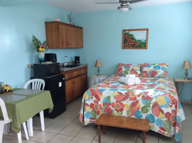 Casa de Kathy STU-Near Beach/BioBay