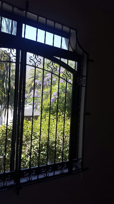 View from enclosed balcony