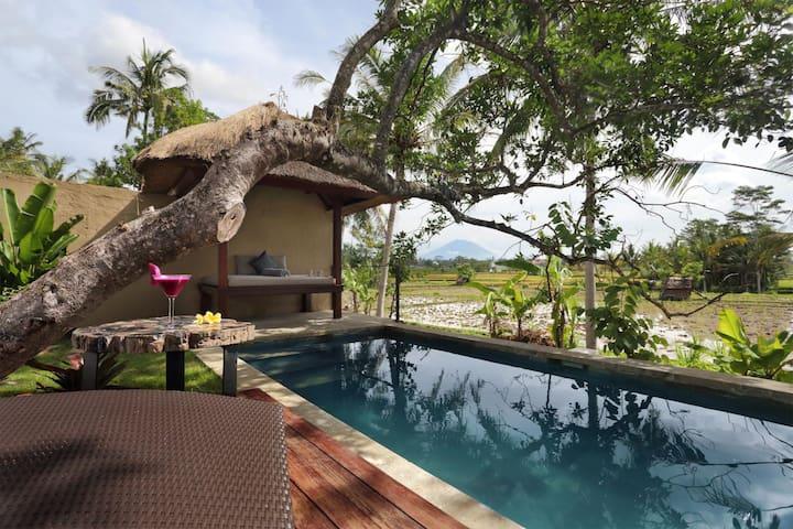 Temuku Ubud Quiet Private Pool with Rice Terrace