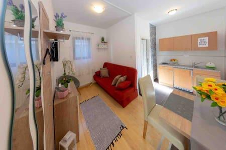 Apartment Žižula 1 Guesthouse Petrović
