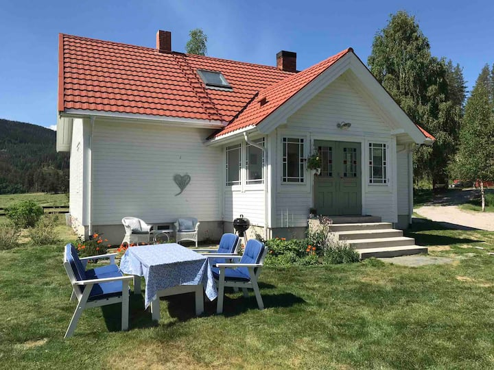 Charming countryhouse in Østerdalen