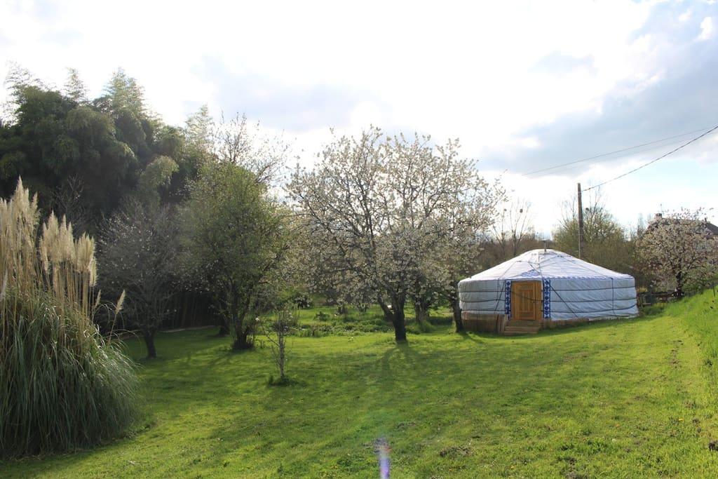 Le Yourt et Jardin