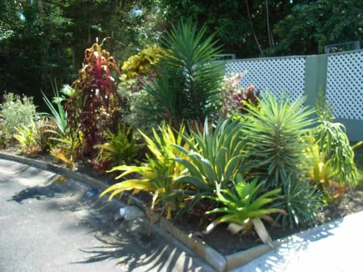 Clifton Beach/PalmCove beautiful beachside Area