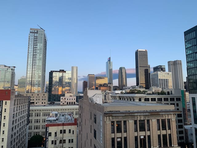 Vintage Modern Lofts Of Downtown Los Angeles-DTLA4
