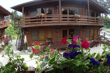 Гостевой дом Апсилия - Gudauta - Bed & Breakfast