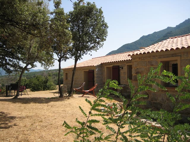 bergerie rénovée en Corse du Sud - Sartène - Haus