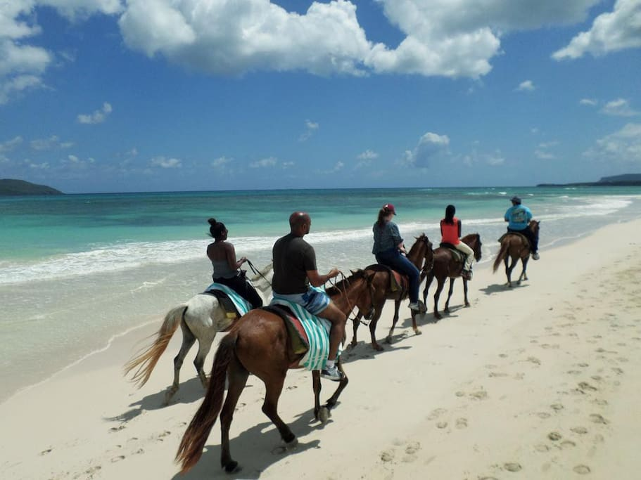 Organizamos excursiones a caballo.