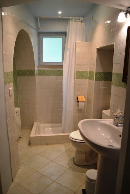 Salle de bain privative (lavabo, douche, WC et sèche-cheveux)