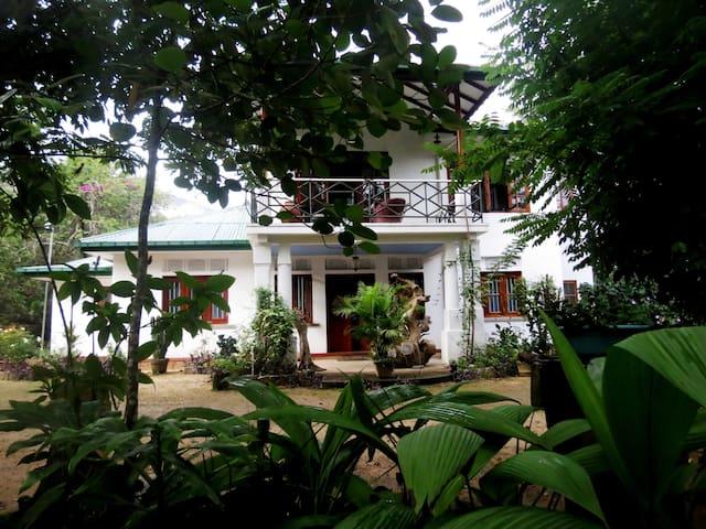 Ravana's Secret Eco Lodge Retreat, Butterfly Room
