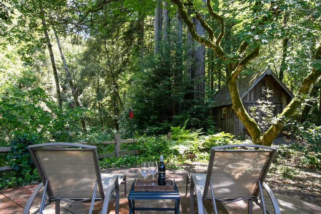 Creekside Redwood Cabin Santa Cruz Cabins For Rent In