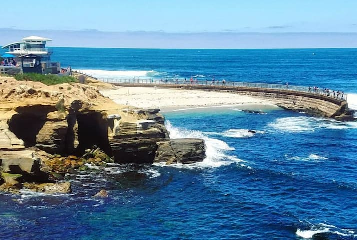 Oceanfront La Jolla Cove Seal Beach Condo
