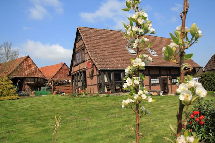 Landhaus in ländlicher Idylle für bis zu 6 Gästen - Bad Münder am Deister