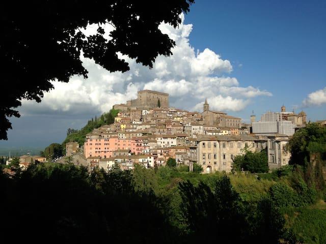 Amazing Apartment in Medieval Soriano nel Cimino - Soriano Nel Cimino - Apartment