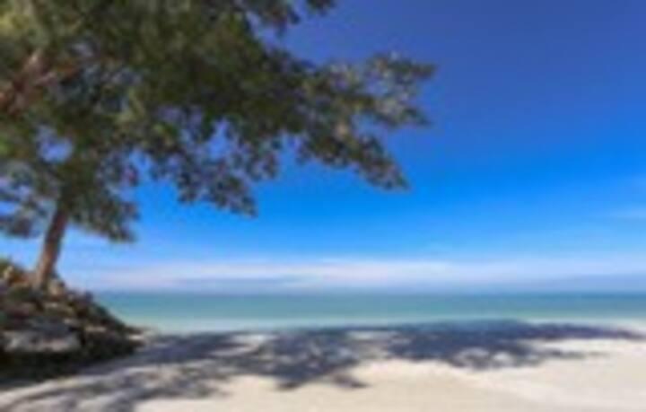 Tropical beachfront condo. Siesta