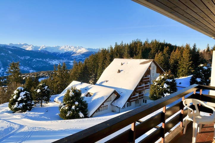 Uninterrupted views, right on the slopes!