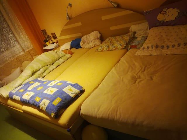 Slunný byt s více pokoji