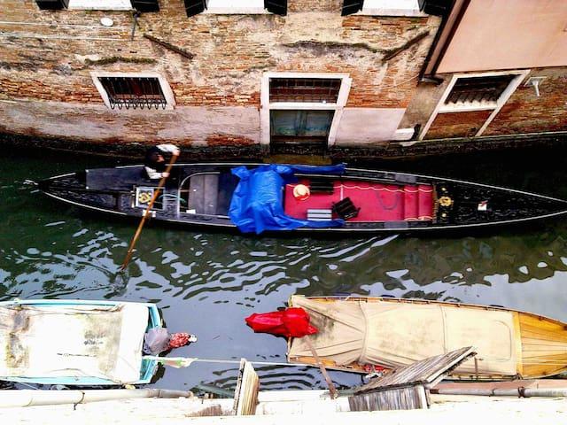 Live Venice as a real Venetian