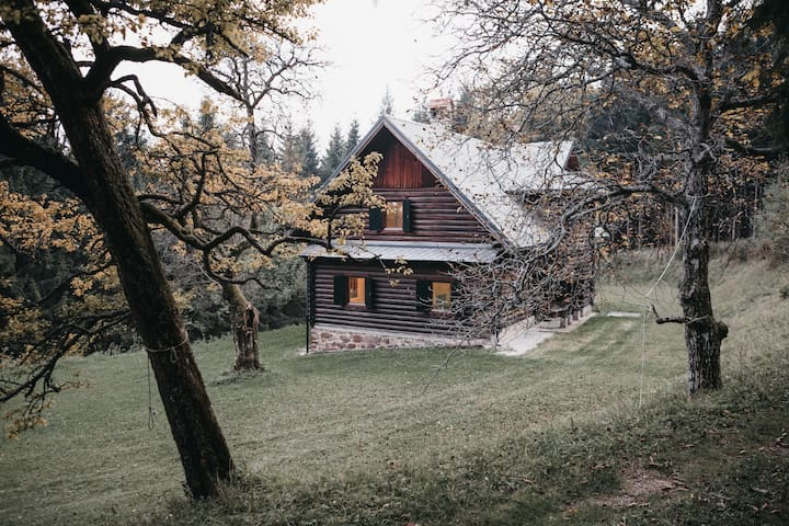 A truly unique mountain cabin experience!
