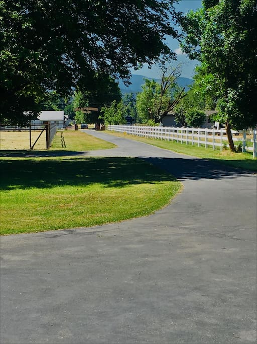 Long Driveway Entrance~ makes for nice evening walks
