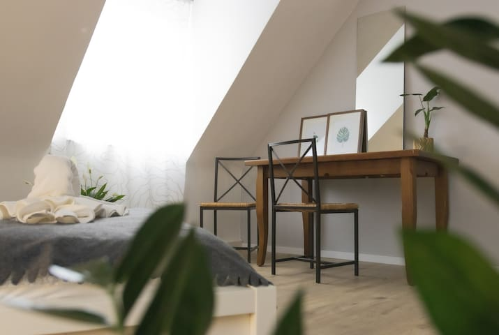 Cozy 2 bedrooms  apartment in the heart of Mainz