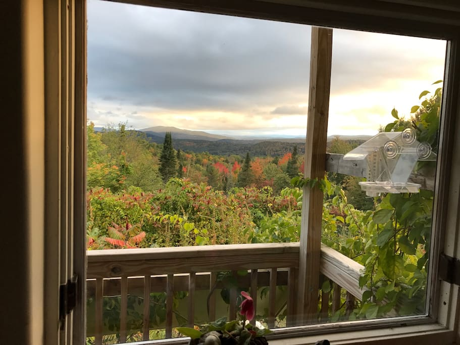 View from the Kitchen window Oct 3,2016 close to peak colors..