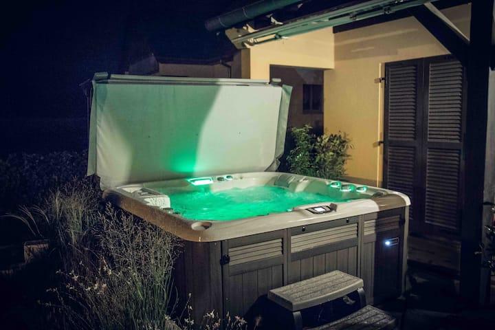 COLMAR-Wintzenheim Apartment with pool and spa