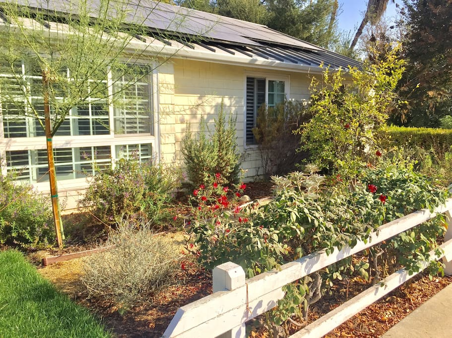 Our modern, Zero Impact Home, is run on solar panels and all shower and sink water recycles to our drought resistant gardens.