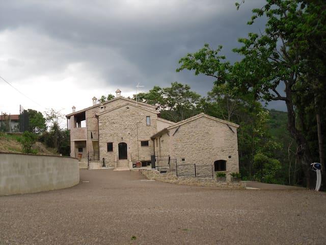 La Collina degli Ulivi(Affitti Turistici):Ortensia
