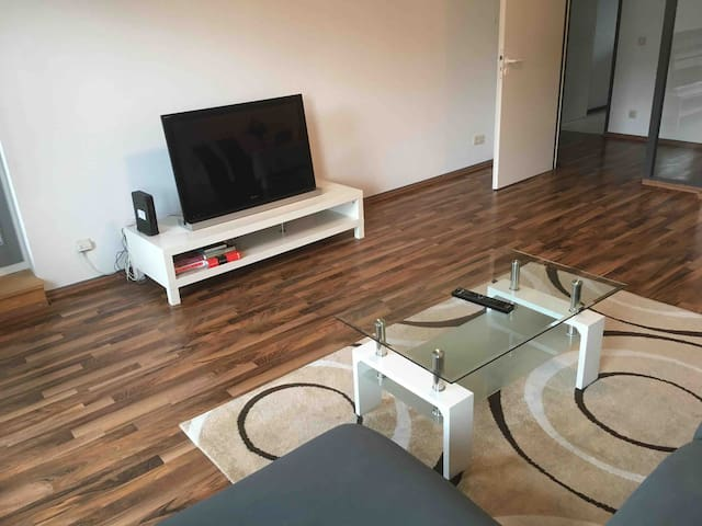 3 room modern apartment (Nicely furnished)