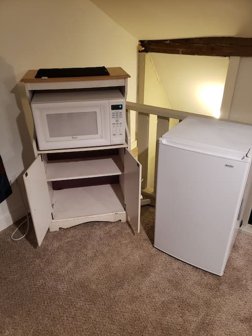Refrigerator and microwave plus storage