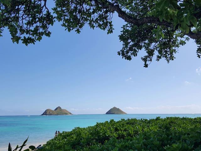 Kailua Cul de sac
