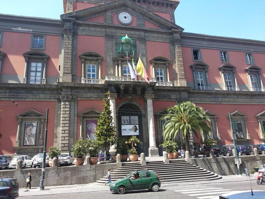 Museo Archeologico Nazionale di Napoli dista solo 600 metri dalla struttura Fonseca Naples